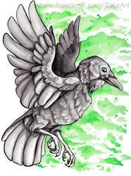 A Birthday Raven by TaksArt