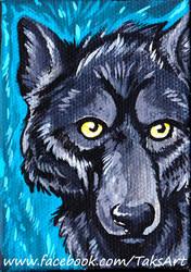 Dark Wolf by TaksArt