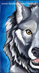 Wolf Fluff - Acrylic Painting - For Sale