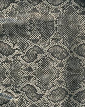 Snake skin - gray and black