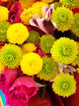 Yellow Cheer by Flowers