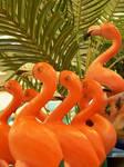 Flamingo Invasion - stock