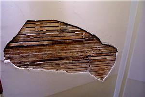 Plaster slats hole in wall