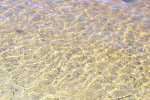 Sandy Bottom Water - stock