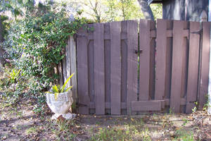 Fence Gate and plant pottery