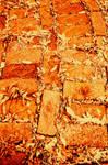Old brick walk stock free