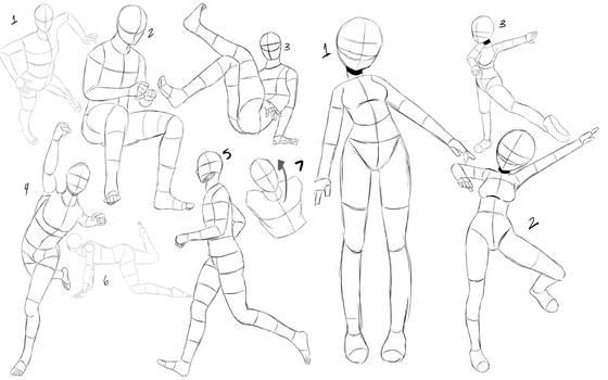 Anatomy Practice (1)