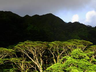 Koolau Mountains by joeyartist