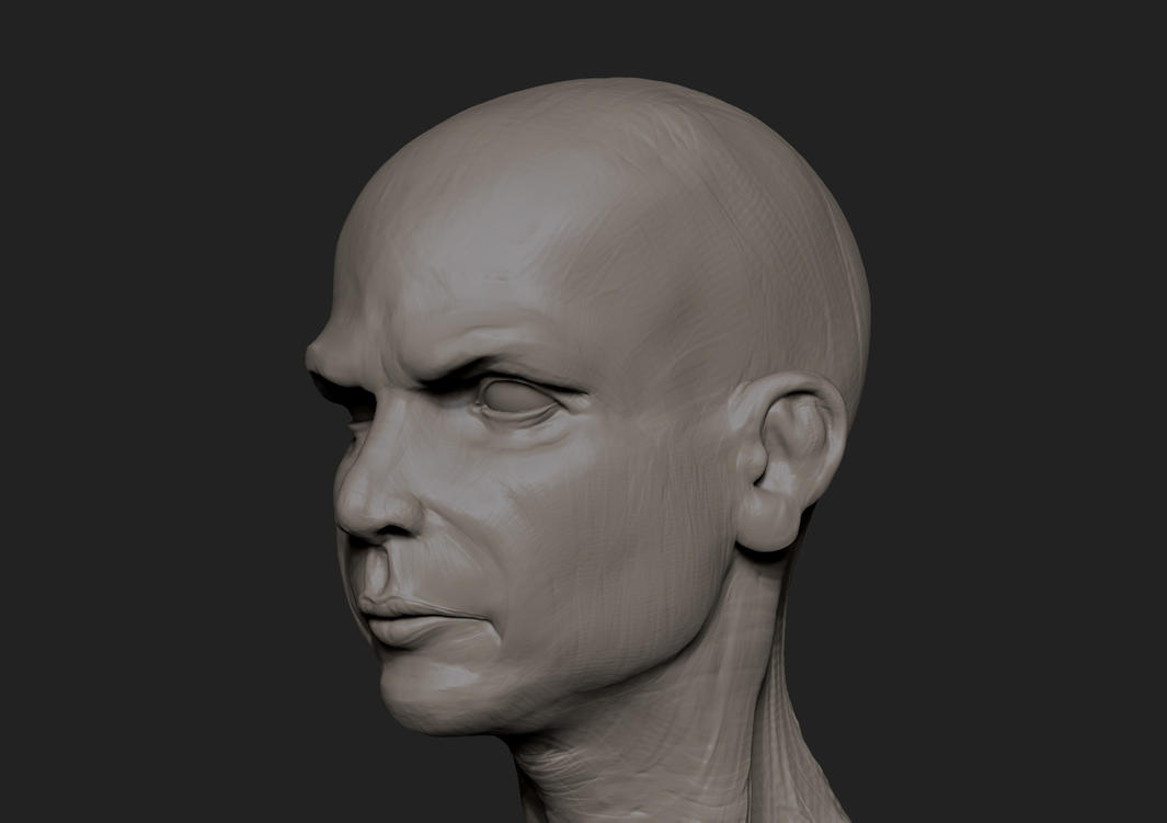 Speed Sculpt head. by Namrettek