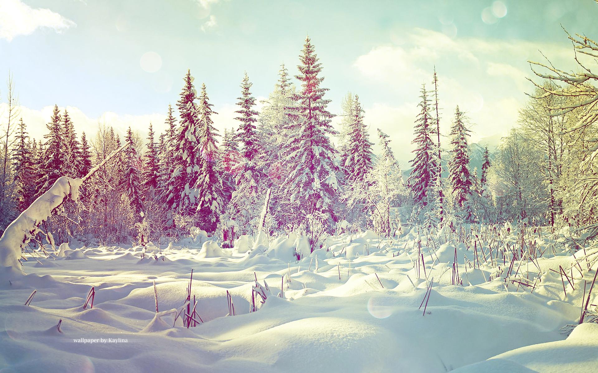 Winter wallpaper by Kaylina on DeviantArt
