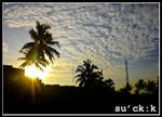 ...sun_light...