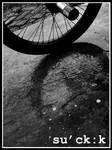 Wheel Reflection