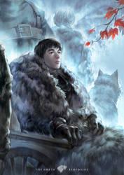 Bran Stark by Hooooon