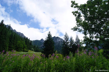One more landscape in Tatras by Expectare