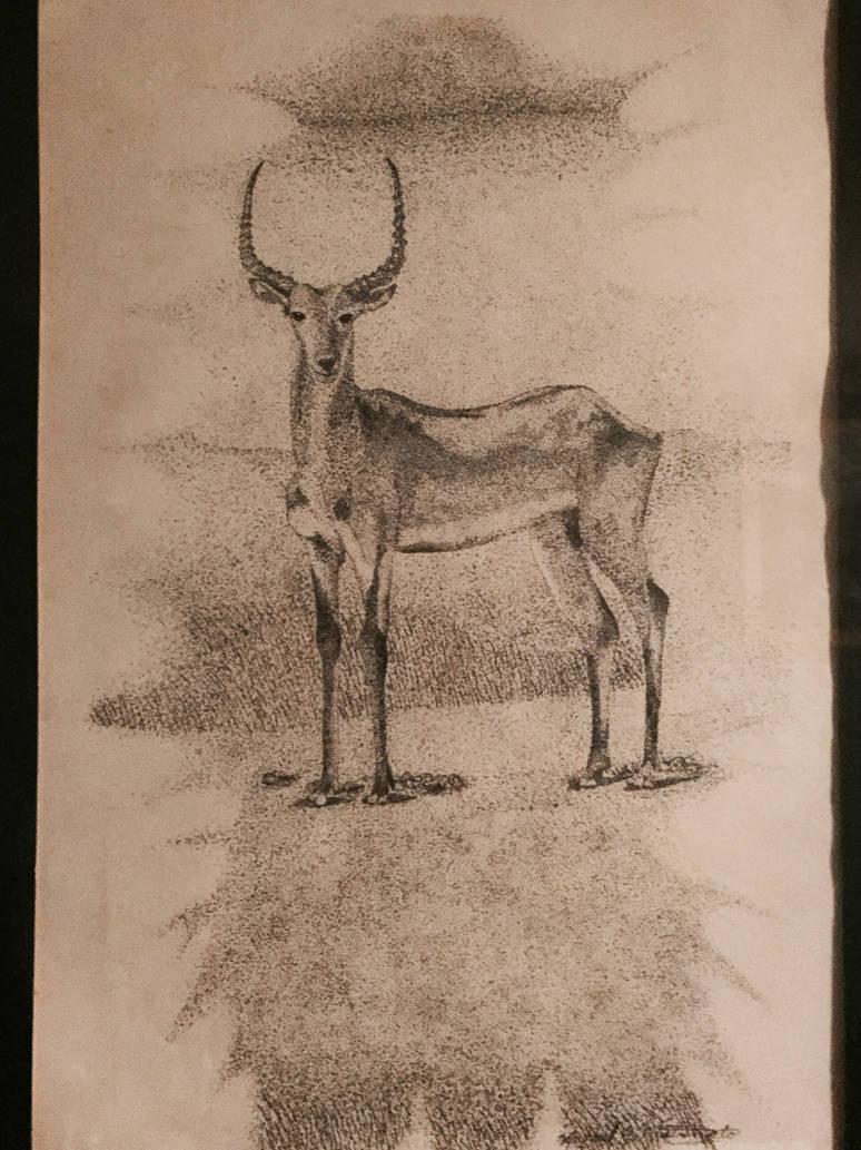 Impala by kdrmickey