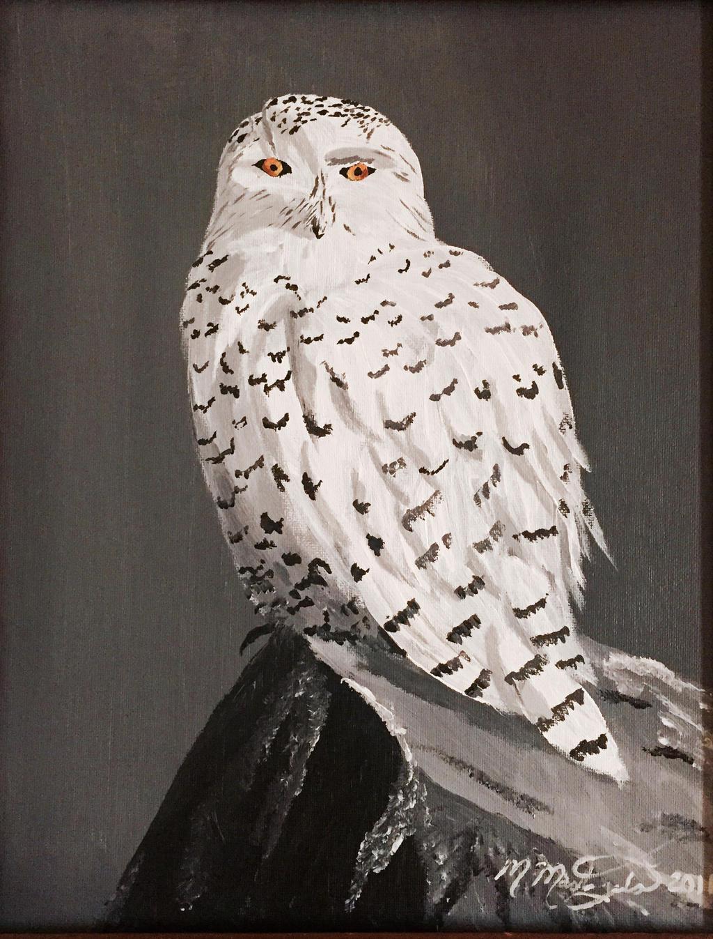 Snowy Owl by kdrmickey