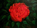 Baron Rose by kdrmickey