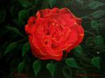 Baron Rose
