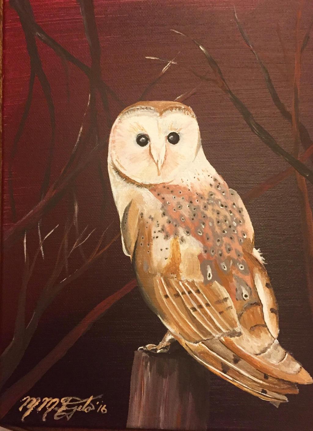 Barn Owl at Dusk by kdrmickey