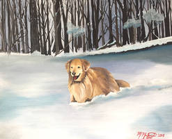 Stella in the snow by kdrmickey