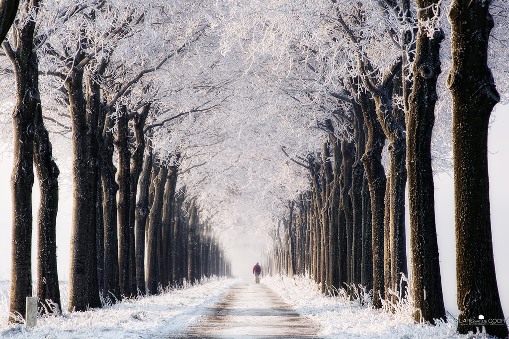 Endless Winter by *LarsVanDeGoor
