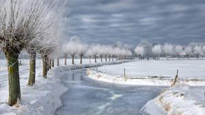 Holland ~winter~
