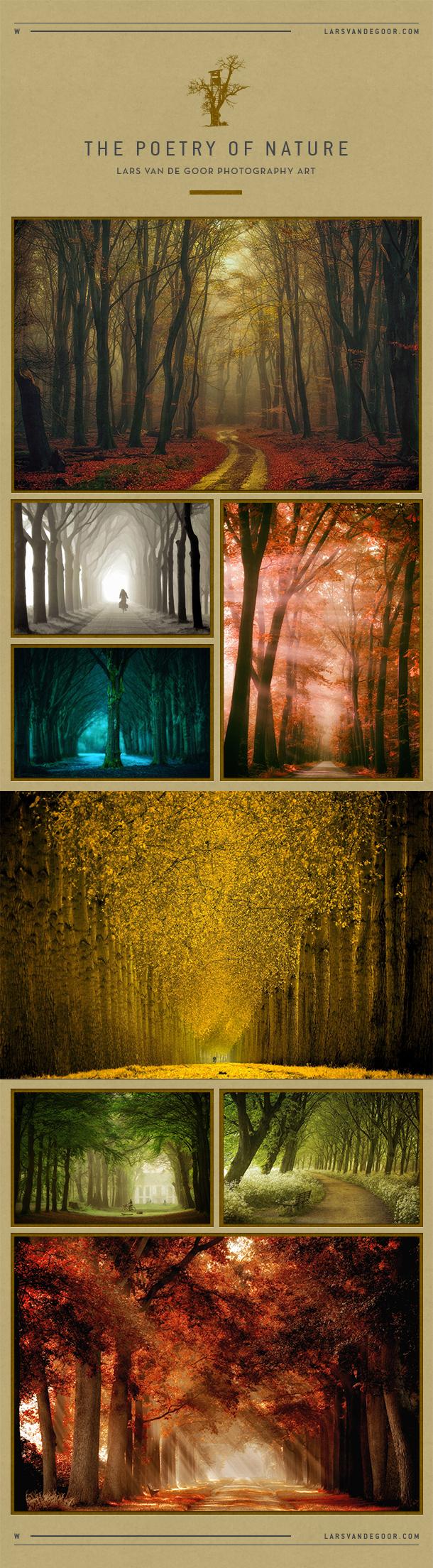 lars van de goor photography art by larsvandegoor on deviantart. Black Bedroom Furniture Sets. Home Design Ideas