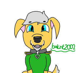 balint2002 as PawPatrol pup(gift/request) by FaraWolfdog