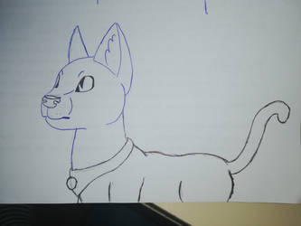 Cat sketch(bored in art class) by FaraWolfdog