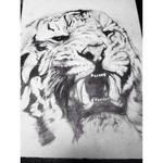 Unfinished Tiger