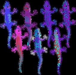 Neon lizard adopts OPEN