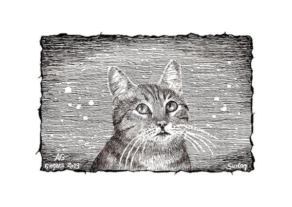 Cats with an attitude - 001