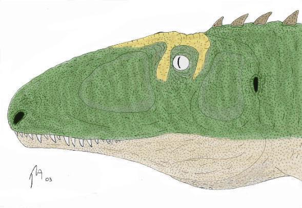 Lourinhanosaurus - color by Khaan