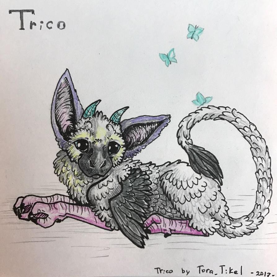 Little Trico 1 by Tora-Tikel