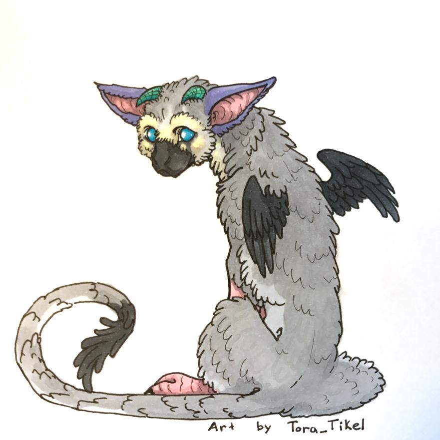 Trico by Tora-Tikel