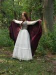 Renaissance Dress Stock 1