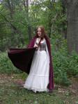 Renaissance Dress Stock 7