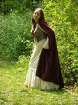 Renaissance Dress Stock 8