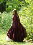 Renaissance Dress Stock 20