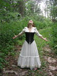 Dress and Corset Stock 10