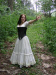 Dress and Corset Stock 11