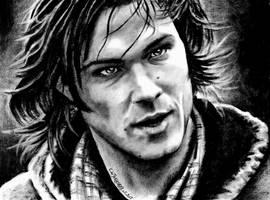 SAM ... by Someone-Else79