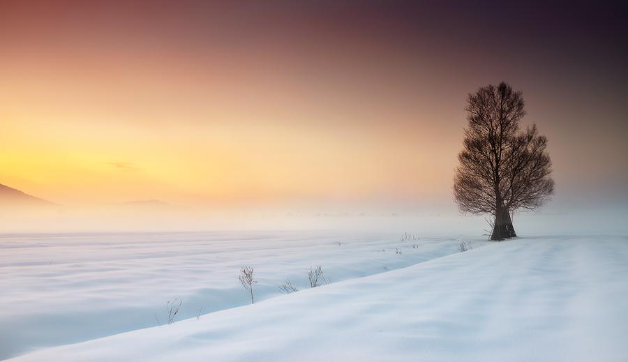 Where Horizons End by Ondskapens