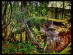 Sleeping Tree by kiokiliant