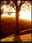 F89 - Shades Of The Rising Sun