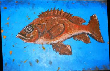 The grouper by HetherWassko