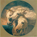 horses original by indeestudios