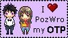 PozWro pixel otp by wilkolak66