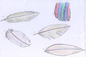 Feathers by Bagdadsoftware