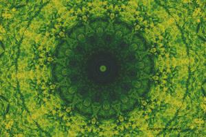 Light Yellow Green Kaleidoscope by CarlosAE